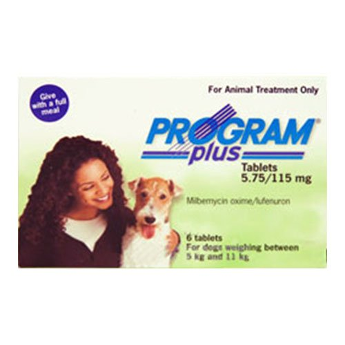 Program for Dog Supplies