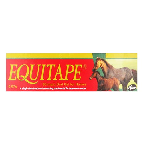 Equitape Wormer Paste for Horse Supplies