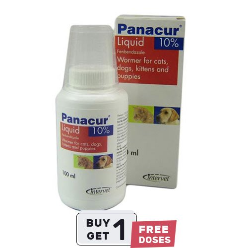 Panacur Oral Suspension for Dogs and Cats - 100 Ml
