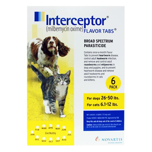 Interceptor For Dogs 26-50 Lbs (Yellow)